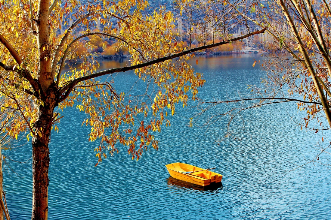 Canva - Boat in the Lake